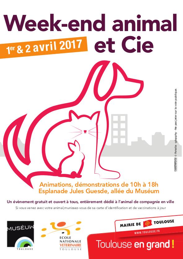 A5 programme animal cie