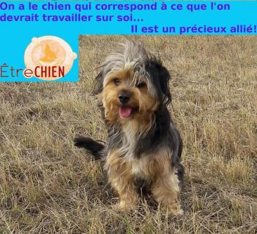 Chien Gong