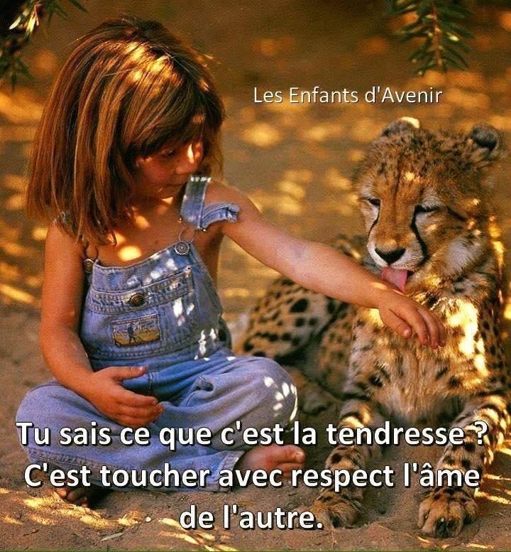 Respect tendre